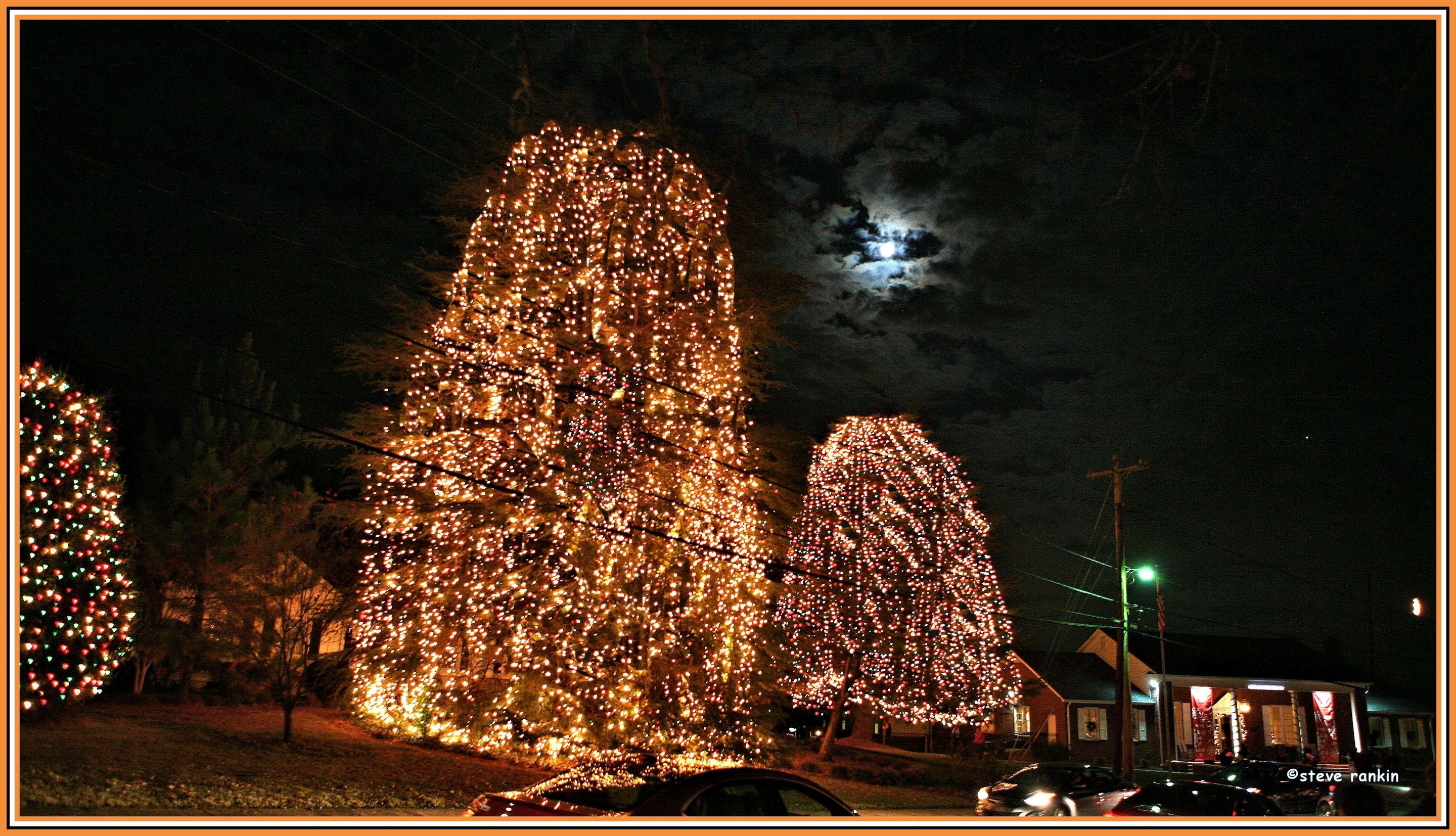 Mcadenville Christmas Lights.Official Web Site